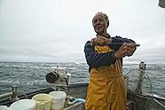 Pêche au Bar