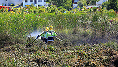 Auckland-Scrub fire in Kohuora Crater Wetland, Papatoetoe