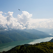 A lone lammergeier soars high above Tehri Lake, created by the massive and highly controversial Tehri Dam along the Bhagirathi (Ganges) River, India.
