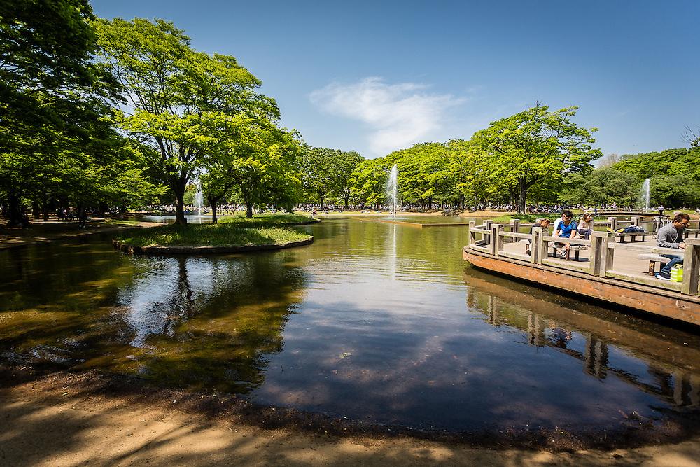 Sunny sunday in Yoyogi Park, Tokyo