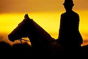 Man riding a horse at sunrise