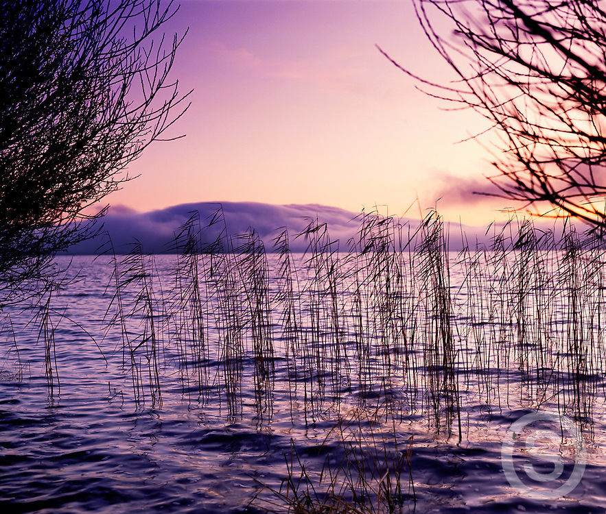 Photographer: Chris Hill, Lough Neagh, Derry, Londonderry