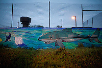 A Great White Shark mural along a wall a public restroom building at Lower Great Highway and Judah St, across from Ocean Beach, in the Outer Sunset, San Francisco, on Saturday, Oct. 23, 2010. Great White Sharks migrate through this part of the Pacific Ocean.