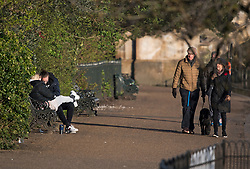 © Licensed to London News Pictures. 04/04/2020. London, UK. Dog walkers pass a couple sat together on a park bench in Hyde Park, London, during a pandemic outbreak of the Coronavirus COVID-19 disease. The public have been told they can only leave their homes when absolutely essential, in an attempt to fight the spread of coronavirus COVID-19 disease. Photo credit: Ben Cawthra/LNP