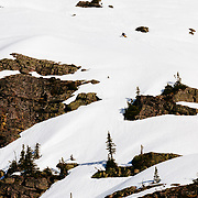 Griffin Post skis an ice encrusted line off of the backside of Gunsight Peak in Glacier National park.