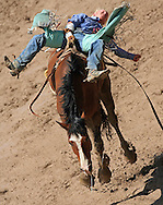 Bareback Rider Tim Paul Shirley scores an 82 riding R8 Rough Cut BR, Championship Sunday, 29 July 2007, Cheyenne Frontier Days