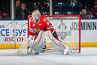 KELOWNA, CANADA - JANUARY 21: Cole Kehler #31 of the Portland Winterhawks defends the net against the Portland Winterhawks on January 21, 2017 at Prospera Place in Kelowna, British Columbia, Canada.  (Photo by Marissa Baecker/Shoot the Breeze)  *** Local Caption ***