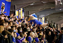 KINGSTON-UPON-THAMES, ENGLAND - Monday, January 5, 2015: The AFC Wimbledon Womble mascot crowd surfs during the FA Cup 3rd Round match against Liverpool at the Kingsmeadow Stadium. (Pic by David Rawcliffe/Propaganda)