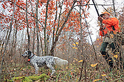 An upland hunter approaches his setter  during a hunt in northern Wisconsin.