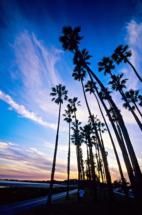 Along the beach, Cabrillo Boulevard, Santa Barbara, California USA