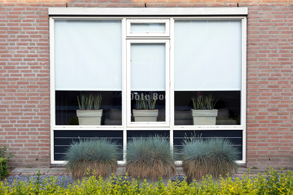 landscaped front yard garden in Holland
