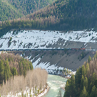 oil train bakken along the flathead river in montana crossing bridge near goat lick, wild and scenic river corridor