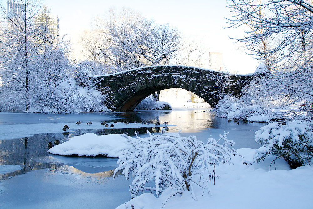Snowy Central Park Bridge Scene