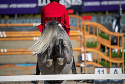 Ahlmann Christian, GER, Clintrexo Z<br /> FEI Jumping Nations Cup Final<br /> Barcelona 2019<br /> © Hippo Foto - Dirk Caremans<br />  03/10/2019