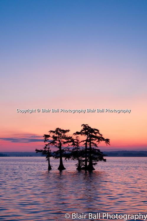 Sunrise at Blue bank Reel Foot Lake