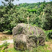 THA/Koh Samui/20160804 - Vakantie Thailand 2016 Koh Samui, natuur, steen