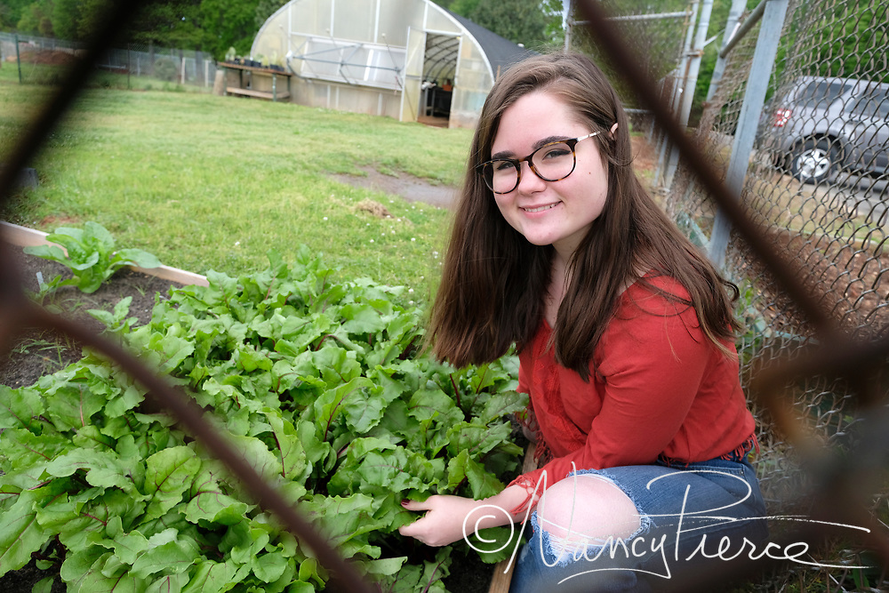 Independence High School - Environmental Sustainability/Landscaping.  These are vegetable plants and greens.