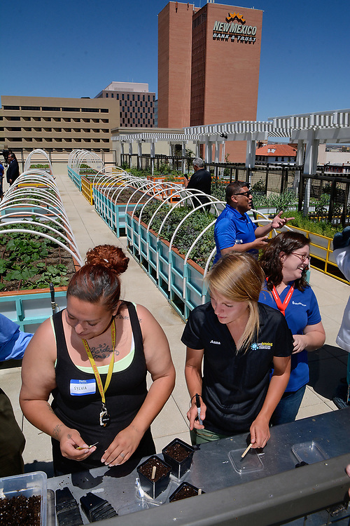 jt061317b/a sec/jim thompson/ left  to right Sylvia Barela,a care giver for a resident  and Anna Martin, Health Living Service Coordinator for YES Housing Developing Communities plant some seeds at the planting table of the roof top gardens on the roof of the Imperial Building in downtown Albuquerque. Tuesday June. 13, 2017. (Jim Thompson/Albuquerque Journal)