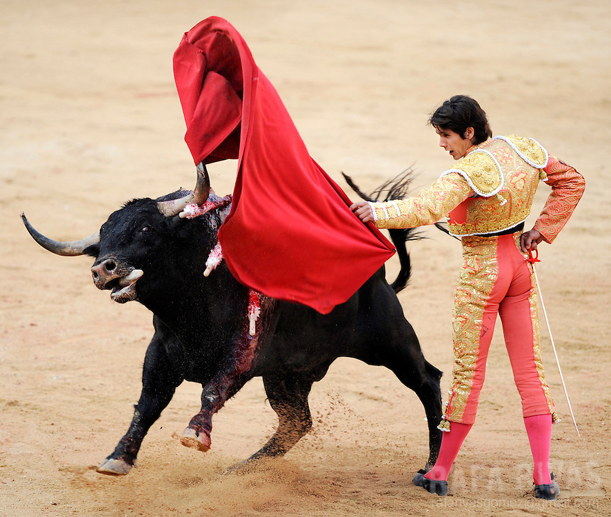 French bullfighter Sebastian Castella fights with muleta a Fuente Ymbro fighting bull, on July 9, 2008, in the Spanish city of Pamplona, during the thirth corrida of the San Fermin festivities.