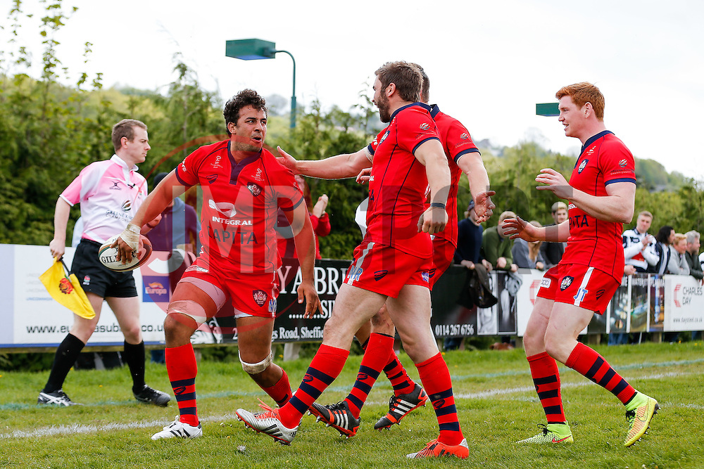Bristol Rugby Flanker Marco Mama celebrates with Fly-Half Nicky Robinson, Number 8 Ryan Jones and replacement Jack Tovey after scoring a try - Photo mandatory by-line: Rogan Thomson/JMP - 07966 386802 - 10/05/2015 - SPORT - RUGBY UNION - Abbeydale Park, Sheffield - Rotherham Titans v Bristol Rugby - Greene King IPA Championship Play Off Semi Final Second Leg.