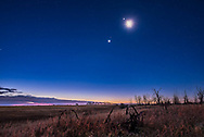 The waning crescent Moon below Jupiter, with that pair of worlds above the pairing of Venus (bright) and red Mars (just above Venus), all in the dawn sky, November 6, 2015. <br /> <br /> This is a composite of 4 exposures: 30 seconds for the ground (to bring out detail there), 8 seconds for the sky (short enough to prevent star trailing), and 2 and 1/4 seconds for the Moon itself to prevent it from being totally blown out as a bright blob. All with the Nikon D750 at ISO 1600 and Sigma 24mm Art lens at f/4. Taken from home.