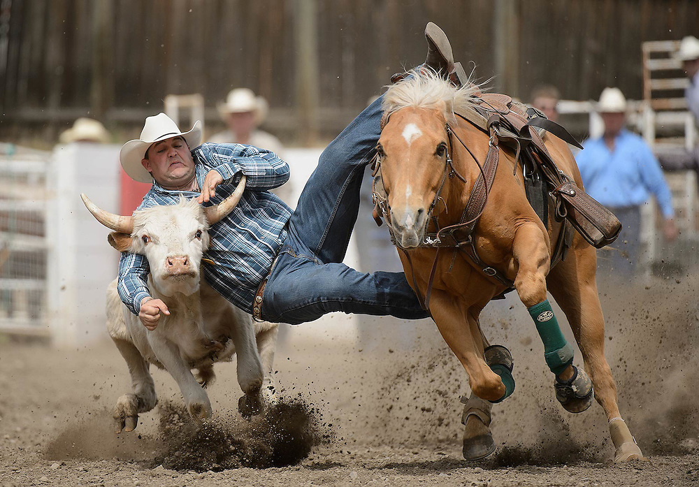 The Falkland Stampede, May 18-20