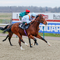 Red Refraction and Richard Hughes winning the 3.30 race