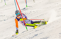 54# Rossum van Max from Netherland during the slalom of National Championship of Slovenia 2019, on March 24, 2019, on Krvavec, Slovenia. Photo by Urban Meglic / Sportida