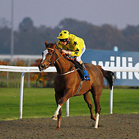 Fairyinthewind and Luke Morris winning the 4.20 race