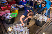 17 JANUARY 2013 - SAMUT SONGKHRAM, SAMUT SONGKHRAM, THAILAND: Seafood vendors pick up their merchandise as a train comes into Samut Songkhram. Four trains each day make the round trip from Baan Laem, near Samut Sakhon, to Samut Songkhram, the train chugs through market eight times a day (coming and going). Each time market vendors pick up their merchandise and clear the track for the train, only to set up again when the train passes. The market on the train tracks has become a tourist attraction in this part of Thailand and many tourists stop to see the train on their way to or from the floating market in Damnoen Saduak.    PHOTO BY JACK KURTZ