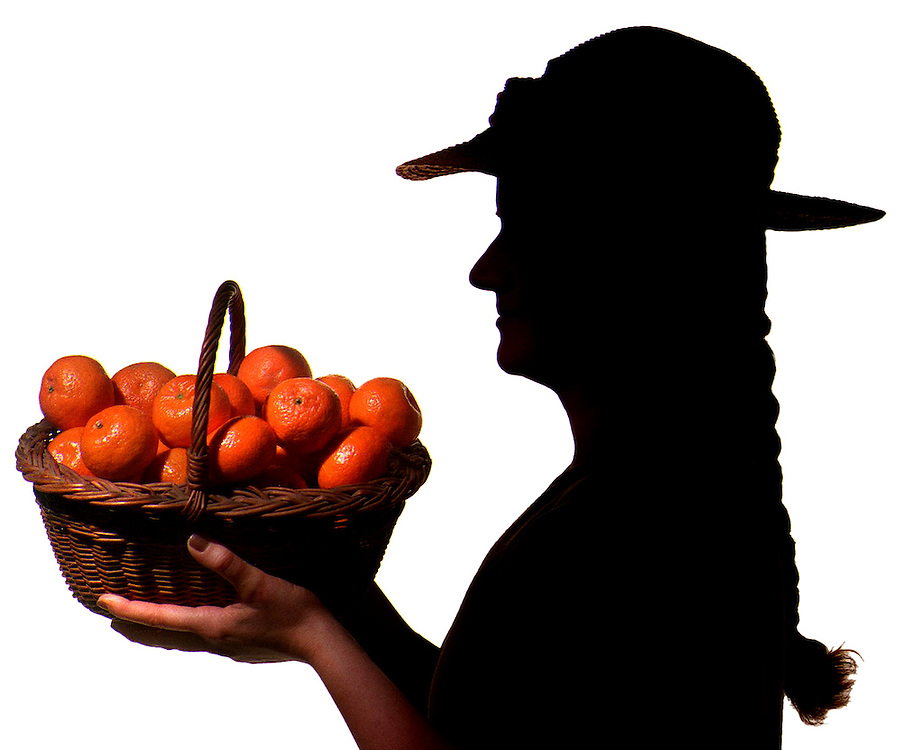 "(4 COLS. X 6.6"" )  David J. Rogowski photo for Food page about clementine runs 2/7/01.     ""Oh my darling Clementines..."""