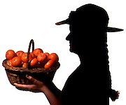 """(4 COLS. X 6.6"""" )  David J. Rogowski photo for Food page about clementine runs 2/7/01.     """"Oh my darling Clementines..."""""""