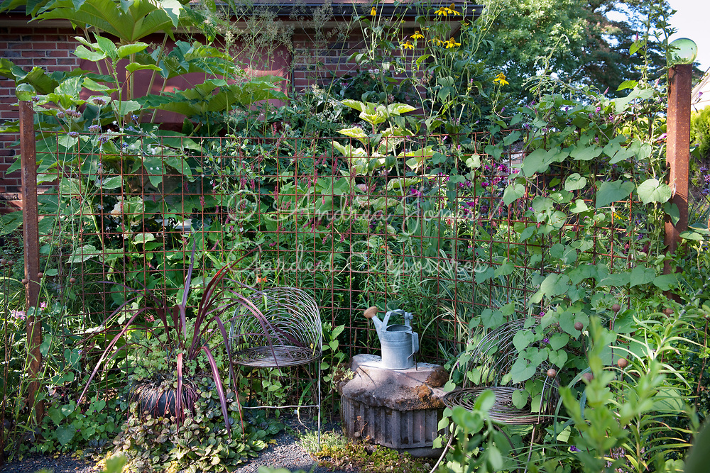 Rusted metal screen with wire mesh seats, and borders of architectural plants in Nancy Goldman's garden