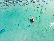 Swinmming with sharks and sting rays, Tiahura, French Polynesia, South Pacific