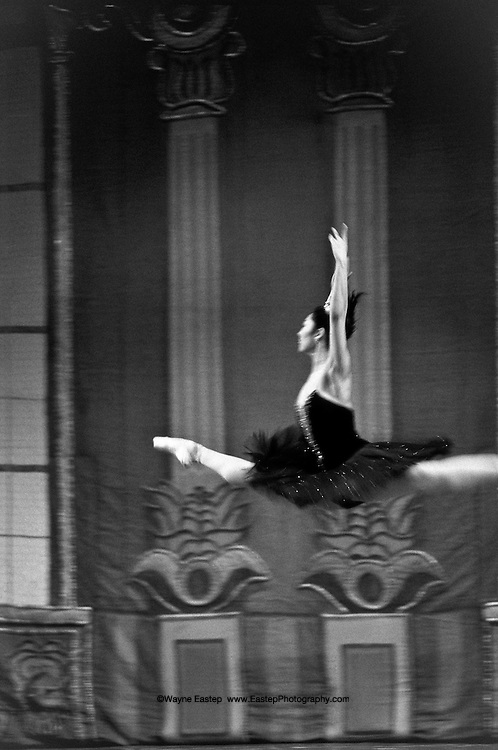 Gulzhan Tutkibaeva seems to defy gravity in her stage entrance.  She is a peoples's artist of the republic of Kazakhstan and a Prima Ballerina of the Kazakh State Theater of Opera and Ballet, also know as the Abay Theater of Opera and Ballet.