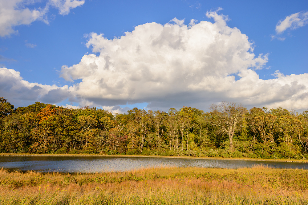 Mashomack Preserve, Shelter Island, NY, The Nature Conservancy