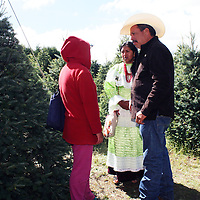 VILLA DE ALLENDE, México.- Dio inicio en el Estado de México, la campaña de comercialización de árboles de navidad 2013, en el rancho Morelos de la comunidad de la Peña, del municipio de Villa de Allende, donde el mandatario mexiquense Eruviel Avila Villegas, corto su árbol. Agencia MVT / José Hernández. (DIGITAL)