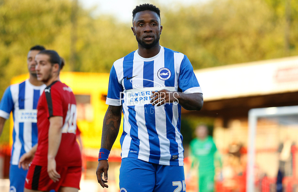 Kasenga LuaLua watching the action unfold during the Pre-Season Friendly match between Crawley Town and Brighton and Hove Albion at the Checkatrade.com Stadium, Crawley, England on 22 July 2015. Photo by Michael Hulf.
