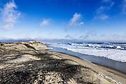 Pristine beach along Cape Hatteras National Seashore, Outer Banks, North Carolina, USA
