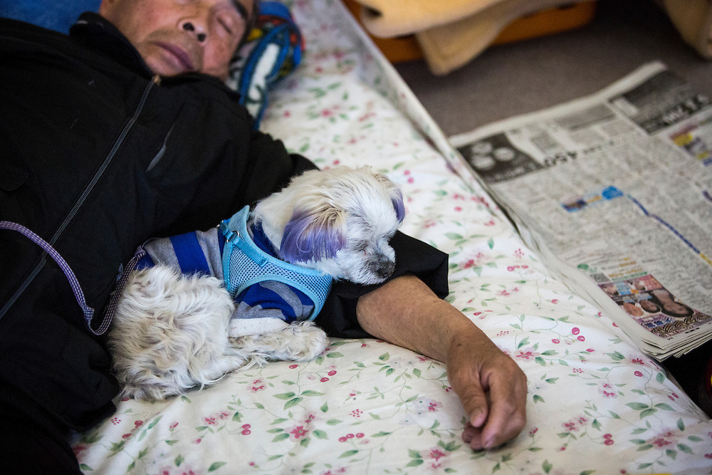 KUMAMOTO, JAPAN - APRIL 21:  Earthquake survivor take rest with his pet in the morning of April 21, 2016 in Mashiki gymnasium evacuation center, Kumamoto, Japan. To date 45 people are confirmed dead and around 11,000 people have evacuated after an 6.5 earthquake on Thursday night and a stronger 7.3 quake on Saturday morning struck the Kyushu Island in western Japan.<br /> <br /> Photo: Richard Atrero de Guzman