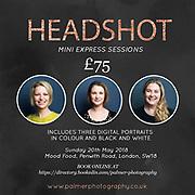 Headshot and portrait express mini sessions
