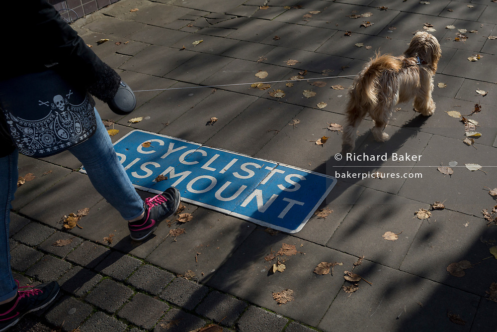A pet dog walks along the Thames riverbank where cyclists are urged to dismount, on 7th November 2019, in Kingston, London, England