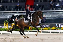HEMMER Katharina (GER), Capo<br /> Stuttgart - German Masters 2019<br /> PREIS DER LISELOTT SCHINDLING STIFTUNG ZUR FÖRDERUNG DES DRESSURREITSPORTS<br /> Piaff Förderpreis Finale<br /> Nat. Dressurprüfung Kl. S***<br /> Grand Prix<br /> 15. November 2019<br /> © www.sportfotos-lafrentz.de/Stefan Lafrentz