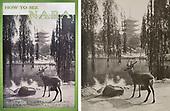 JTB Nara Booklet+Orig Print 1936