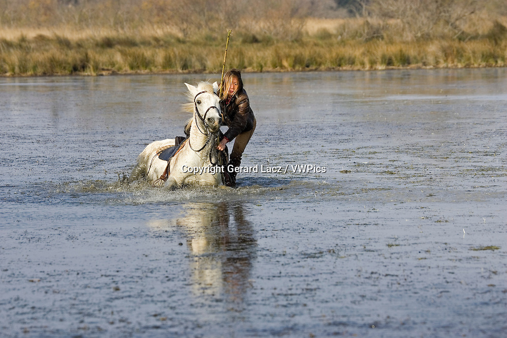 CAMARGUE HORSE, WOMAN IN SWAMP, SAINTES MARIE DE LA MER IN SOUTH OF FRANCE
