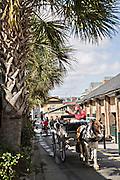 Horse carriage passes the Historic Charleston City Market on Market Street in Charleston, SC.