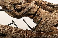 Alessano, 31 luglio 2019. Opere di Michele Mathison realizzate presso Palazzo Sangiovanni in occasione del programma artistico Muse Salentine
