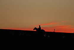 Breeder's Cup 2015 contenders took the track, Thursday, Oct. 22, 2015 at Keeneland Racecourse in Lexington.