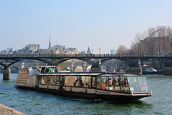 Sightseeing boat tour with Pont des Arts and Ile de la cite in the background