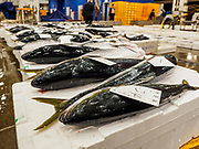 07 JUNE 2018 - SEOUL, SOUTH KOREA:  Individual fish laid out for auction in the Noryangjin Fish Market. The auctions start about 01.00 AM and last until 05.00 AM. Noryangjin Fish Market is the largest fish market in Seoul and has been in operation since 1927. It opened in the current location in 1971 and was renovated in 2015. The market serves both retail and wholesale customers and has become a tourist attraction in recent years.     PHOTO BY JACK KURTZ